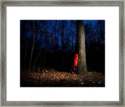 Forest Creatures Framed Print