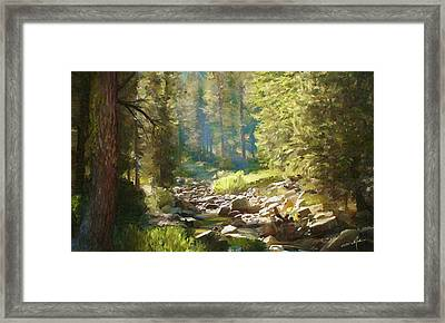 Forest Creek Framed Print by Dale Jackson