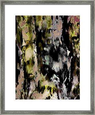 Forest Crones Detail Framed Print by Richard Fisher