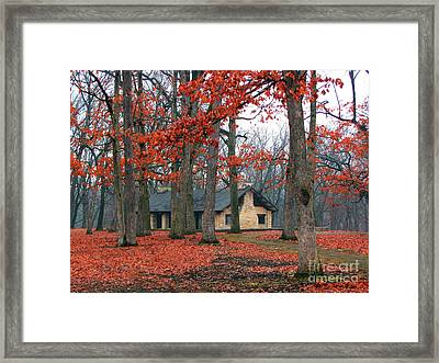 Forest Field House 2 Framed Print