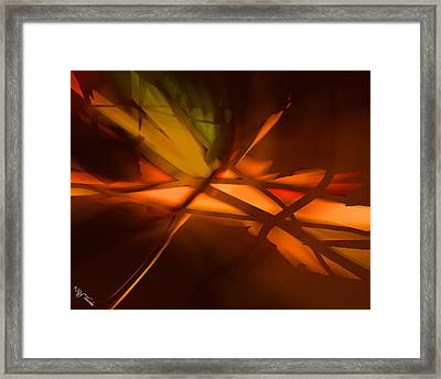Forest Fire Framed Print by Rick Thiemke