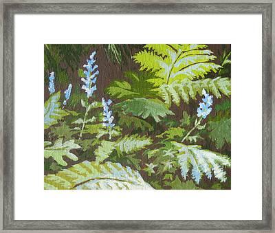 Forest Floor Framed Print by Sandy Tracey