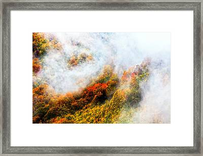 Forest In Veil Of Mists Framed Print by Evgeni Dinev