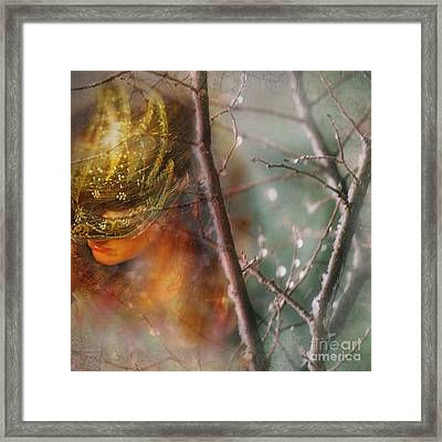 Forest Of Enchantment Framed Print