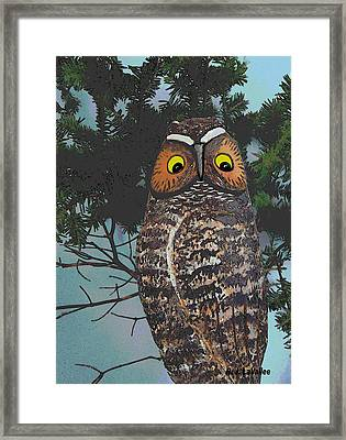 Forest Owl Framed Print