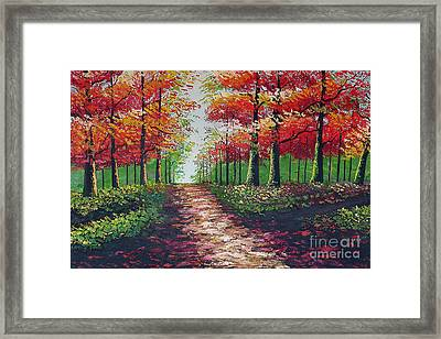 Forest Path - Detail Framed Print by Kostas Dendrinos