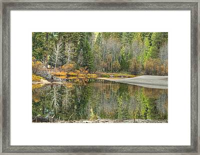 Forest Reflection-merced River Framed Print by Ron Schwager