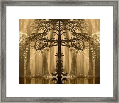 Forest Reflection Framed Print by Odon Czintos