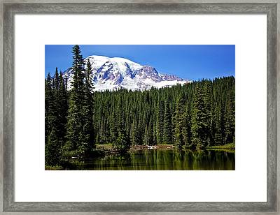 Framed Print featuring the photograph Forest Reflections by Joe Urbz