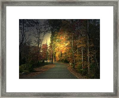 Framed Print featuring the photograph Forest Road 2 by Elizabeth Coats