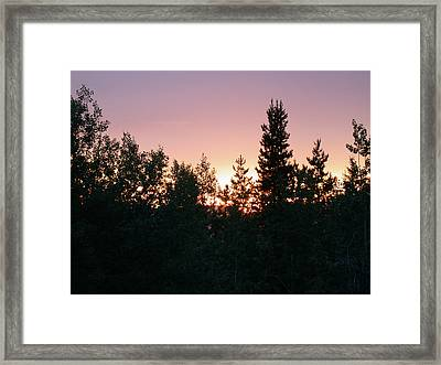 Forest Sunset Silhouette Framed Print