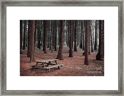 Forest Table Framed Print by Carlos Caetano