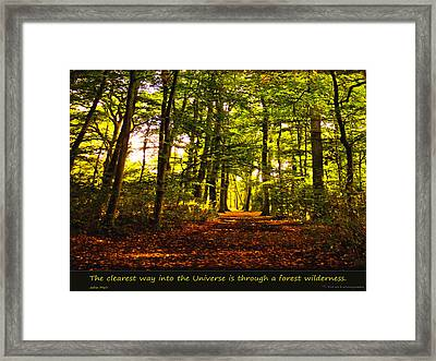 Forest Wilderness Framed Print by Yvon van der Wijk