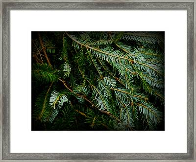 Framed Print featuring the photograph Forever Green by Robin Dickinson