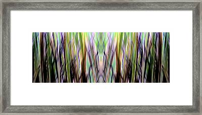 Forever Searching Framed Print by Danny Lally