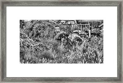 Forgotten Bw Framed Print by JC Findley