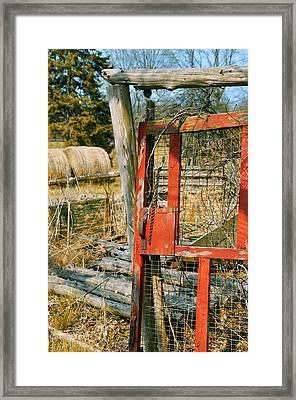 Forgotten Garden Framed Print by JAMART Photography
