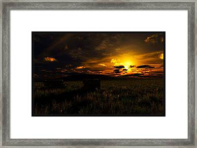 Forgotten Homestead... Framed Print by Tim Fillingim