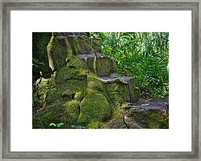 Forgotten Steps Framed Print by Jen Morrison