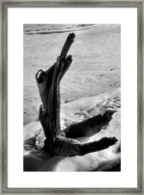 Form And Foam Framed Print by Steven Ainsworth