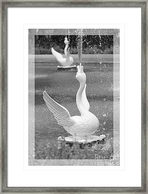 Forsyth Fountain - Black And White 3 Framed Print by Carol Groenen