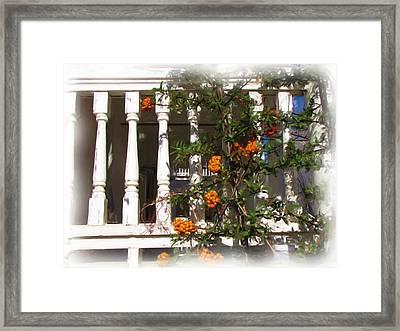 Fort Bayard Steps With Berries Framed Print by FeVa  Fotos