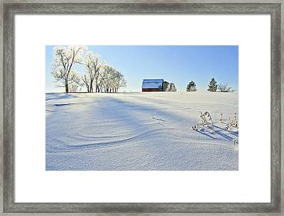 Fort Collins Colorado In January Framed Print