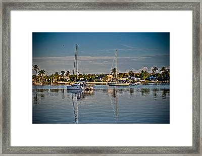 Fort Pierce Sweetness Framed Print by Trish Tritz