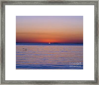 Fort Sumter Sunrise Framed Print by Al Powell Photography USA