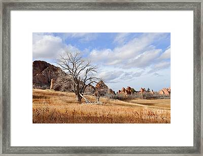 Framed Print featuring the photograph Fountain Valley by Cheryl McClure