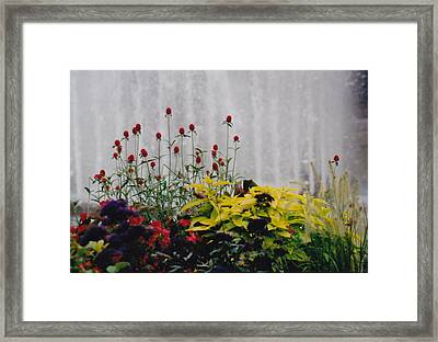 Fountains And Floral Framed Print