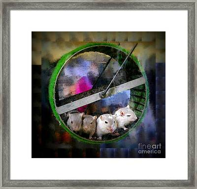 Four Baby Gerbils On Wheel Framed Print by Renee Trenholm
