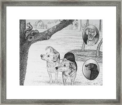 Four Dogs And A Squirrel Framed Print