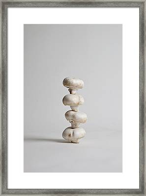 Four Mushrooms Arranged In A Stack, Studio Shot Framed Print by Halfdark