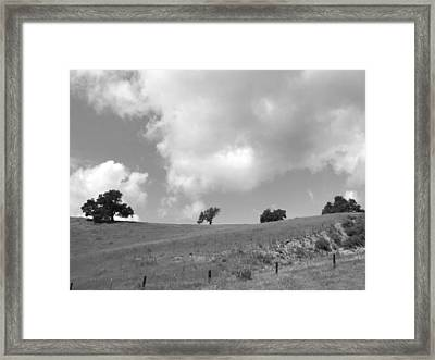 Framed Print featuring the photograph Four On The Hill by Kathleen Grace
