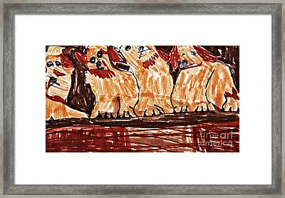Four Puppies In A Row Framed Print by Stephanie Ward