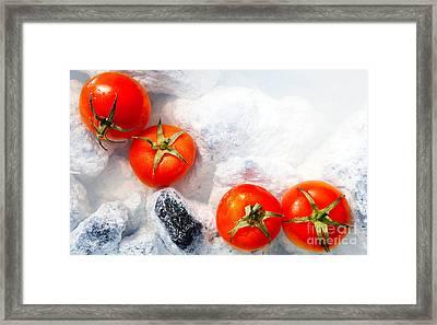 Four Red Tomatos  Framed Print by Agusta Gudrun Olafsdottir
