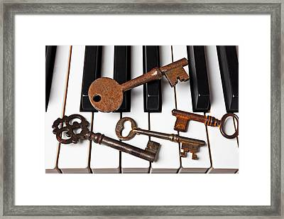 Four Skeleton Keys Framed Print by Garry Gay