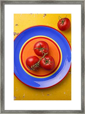 Four Tomatoes  Framed Print by Garry Gay