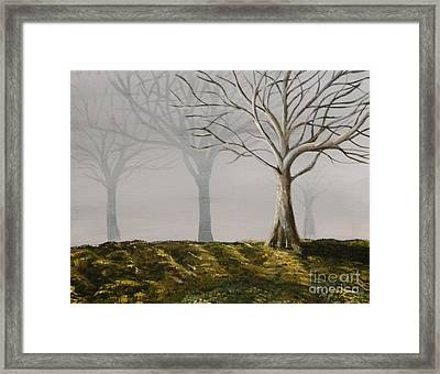 Four Trees Framed Print