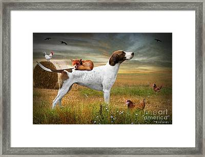 Fox And Hound Framed Print