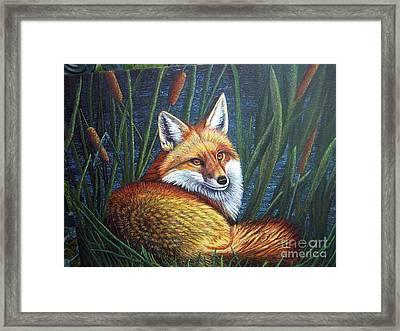 Fox In Cat Tails Framed Print by Terri Maddin-Miller