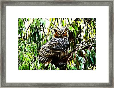 Fractal-s -great Horned Owl - 4336 Framed Print