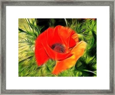 Fractalius Poppy Framed Print by Sharon Lisa Clarke