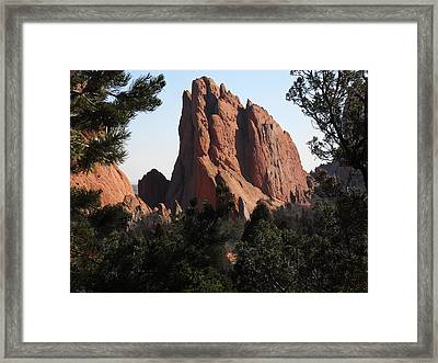 Framed Print featuring the photograph Frame Of Pines by Clarice  Lakota