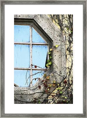 Framed Autumn Blue Framed Print