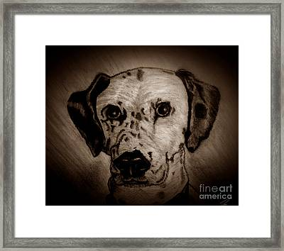 Framed Print featuring the drawing Freckles by Ayasha Loya