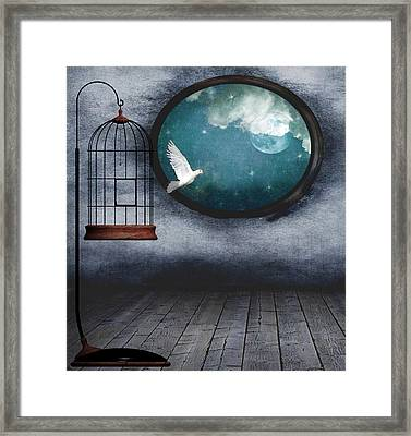 Free As A Bird Framed Print by Marie  Gale