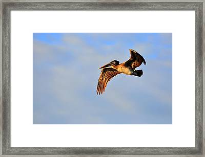 Free Framed Print by Barry R Jones Jr