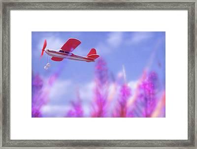 Free Flight Framed Print by Richard Piper